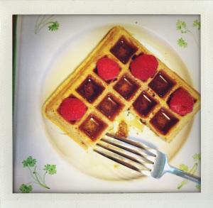 """""""waffle-y goodness"""""""
