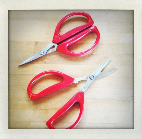 """""""joyce chen scissors"""""""
