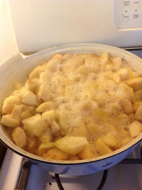 """""""applesauce cooking"""""""