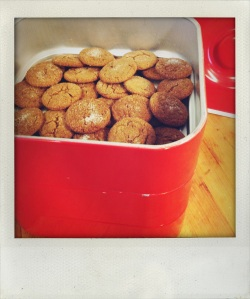"""""""staring to fill up the cookie tin"""""""