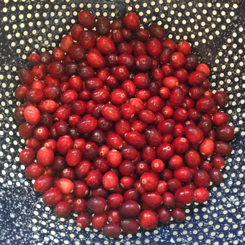 cranberries in sieve