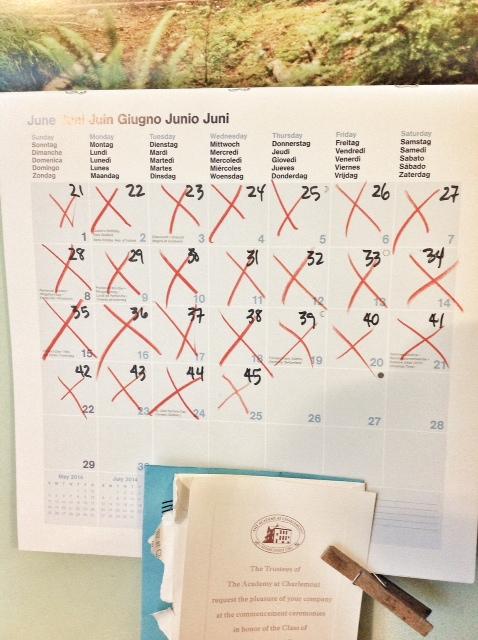 quarantine calendar