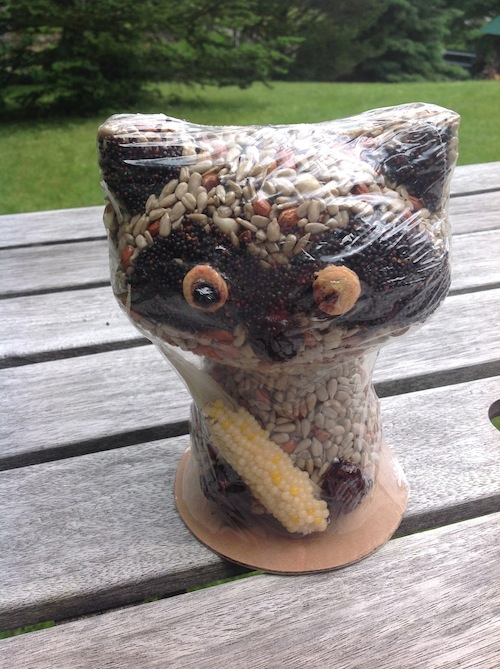 Seed Raccoon