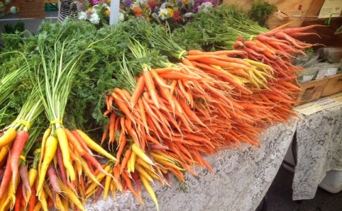 Bunches and bunches of carrots