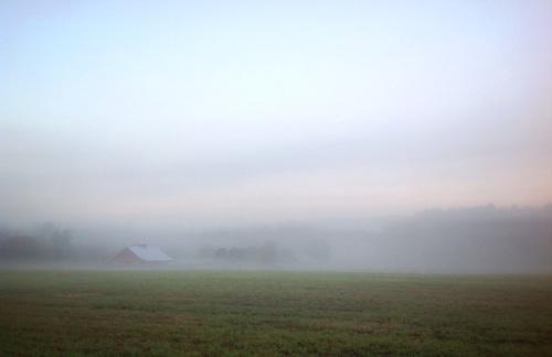 Mist on Mountain Street
