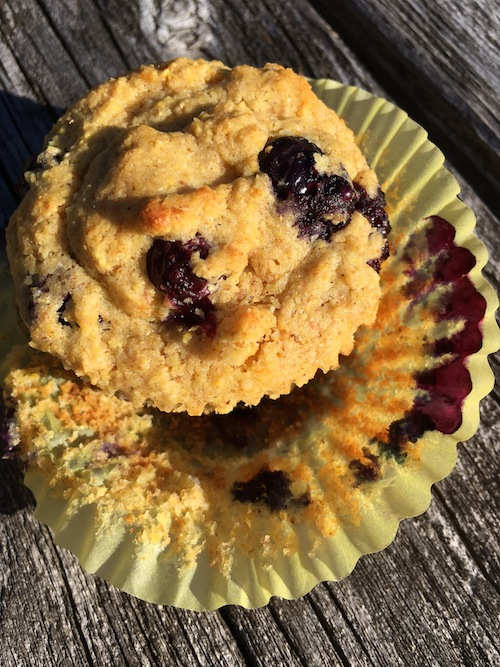 Blueberry corn muffins for breakfast