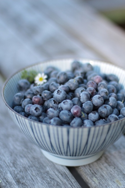 Bowl of summer blueberries