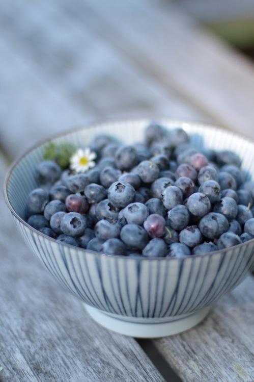 Bowl of summer blueberries