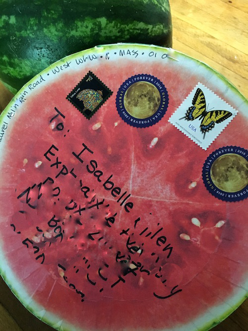 Watermelon happy mail package