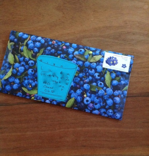 Blueberry happy mail