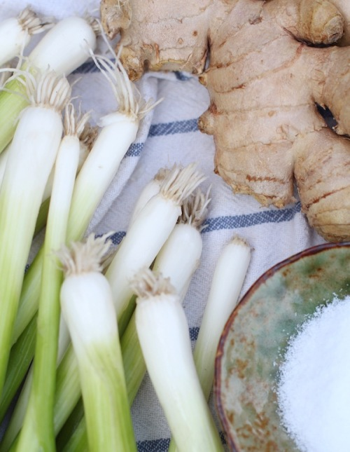 Scallions, ginger and salt - the essential ingredients for green crack sauce