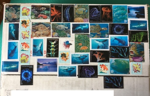 Under the sea themed stamps on mailing box.